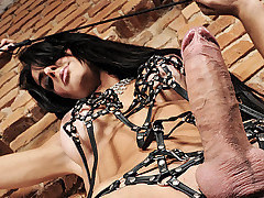 Clips of cock, fuck, mistress, shemale, amazing categories
