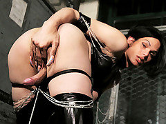 Mistress Foxi takes us into her world and shows us exactly what could happen when you step across the threshold into her dungeon of pain and submission.  She will have you crawling across her dirty floors so that you can kneel up and take her big cock like a man.