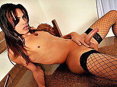 Big cock shemale diva Lohany Mickelly is with us today for the first time and she's looking stunning in her fishnet stockings and high heels. Watch this hottie strip down slowly teasing the camera until she is ready to burst. That's when the fun begins, watch her play with that cock!