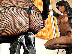 Now this is one well hung motherfucking tranny!  Her name is Ariadny Oliver, and she is tall, voluptuous and loaded where it counts!  In this video she wears a full length fishnet bodystocking that is conveniently open at the crotch, allowing her huge cock and balls to swing free.  Apart from her enormous weapon, this pretty Latina is extremely feminine, with a gorgeous face, long black hair and a full pair of full shapely breasts.  However, it's that package that will be the center of your attention as she twirls around the stripper pole and then starts to jerk herself off.  That dark brown prick is rock hard, enormous and delicious!