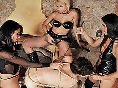 Clips of pain, man, shemale, submissive, lesson categories
