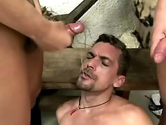 Clips of , , shemale, cumshot,  categories