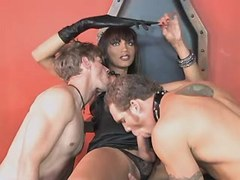 Clips of shemale, sucks, beautiful, tranny, guys categories