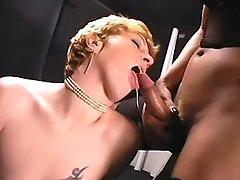 Clips of shemale, shemales, whore, cumload, orgy categories