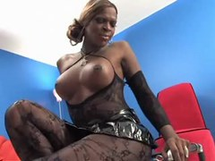 Clips of shemale, tranny, bigcock, black, stockings categories