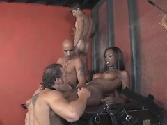 Clips of orgy, tranny, beautiful, black, wild categories