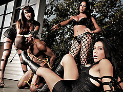 Three of the baddest shemale dommes are in action today gangbanging this poor helpless guy. Watch as Gabriella, Juliana and Vanessa all take turns cramming their big rockhard cocks down his throat and pounding his ass relentlessly while he obeys every command.