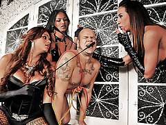 Each of these three tgirls could easily handle a submissive male on their own, together this guy doesn't stand a chance. Watch as Michelly, Sabrina and Veronica gang up on this submissive male, each taking turns doing anything and everything they want to him.