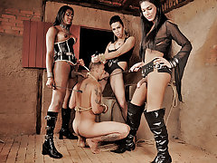 Ts dommes Agatha, Daphynne and Yasmin show no mercy in this scene for their submissive man slave. They tie him up, spank him and each take turns fucking his mouth and ass with their big hard cocks until they are ready to cum. Shemale domination at it's kinkest!